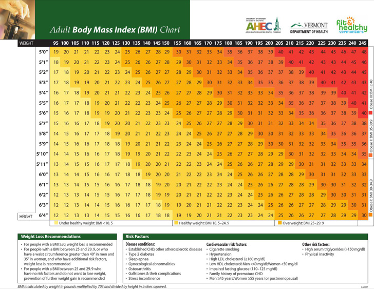 adult-body-fat-mass-index-chart-sample