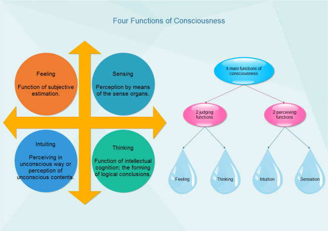 consciousness-functions-diagram