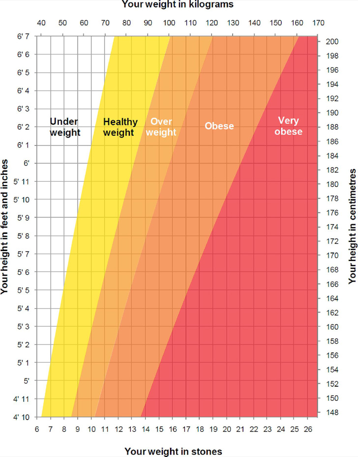 height-and-weight-chart-template-for-men