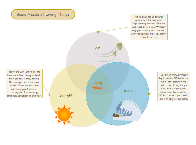 living-things-needs