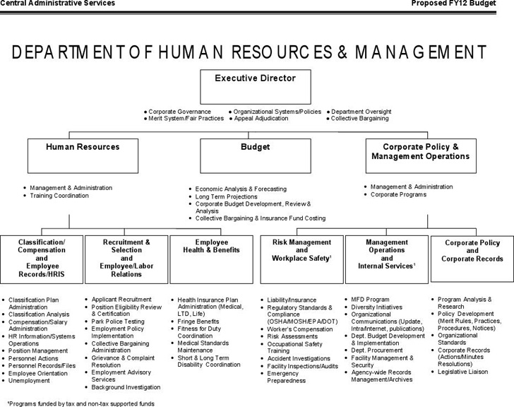 human-resources-organizational-chart-4