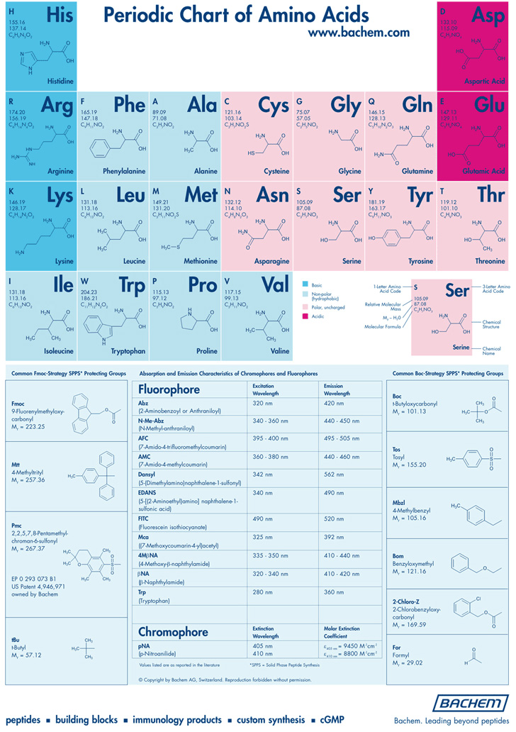 periodic-chart-of-amino-acids
