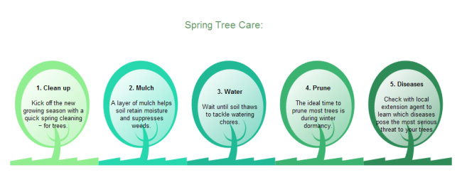 tree-care-sequence-chart